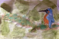 Amelie-kingfisher