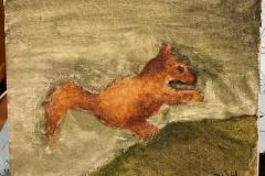 Olly-squirrel