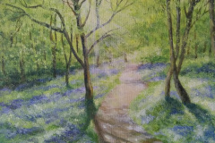 Bluebells-in-the-outwoods-by-Angela-Smith