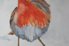 Cheeky-Robin-1-Marie-Macalister