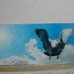 Pat Holland Gull