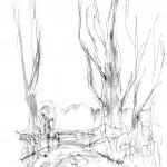 Warren Hills pen sketch Peter Hollis