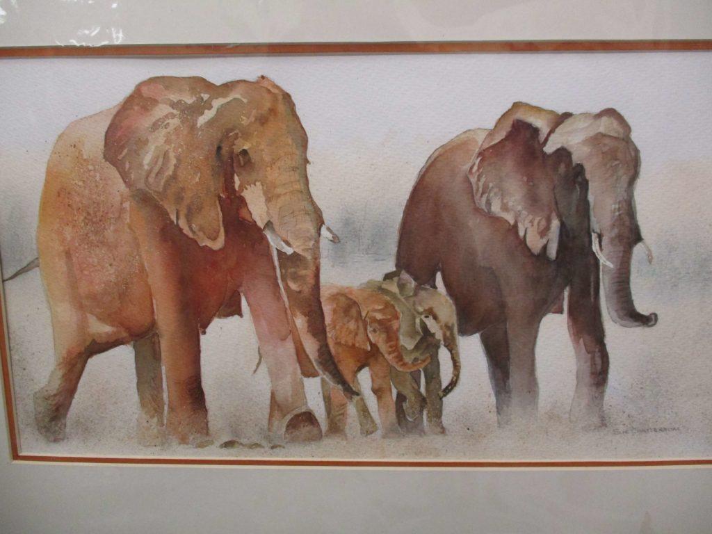 Sue Chatterton Elephants