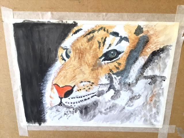Jane peck tiger acrylic painting