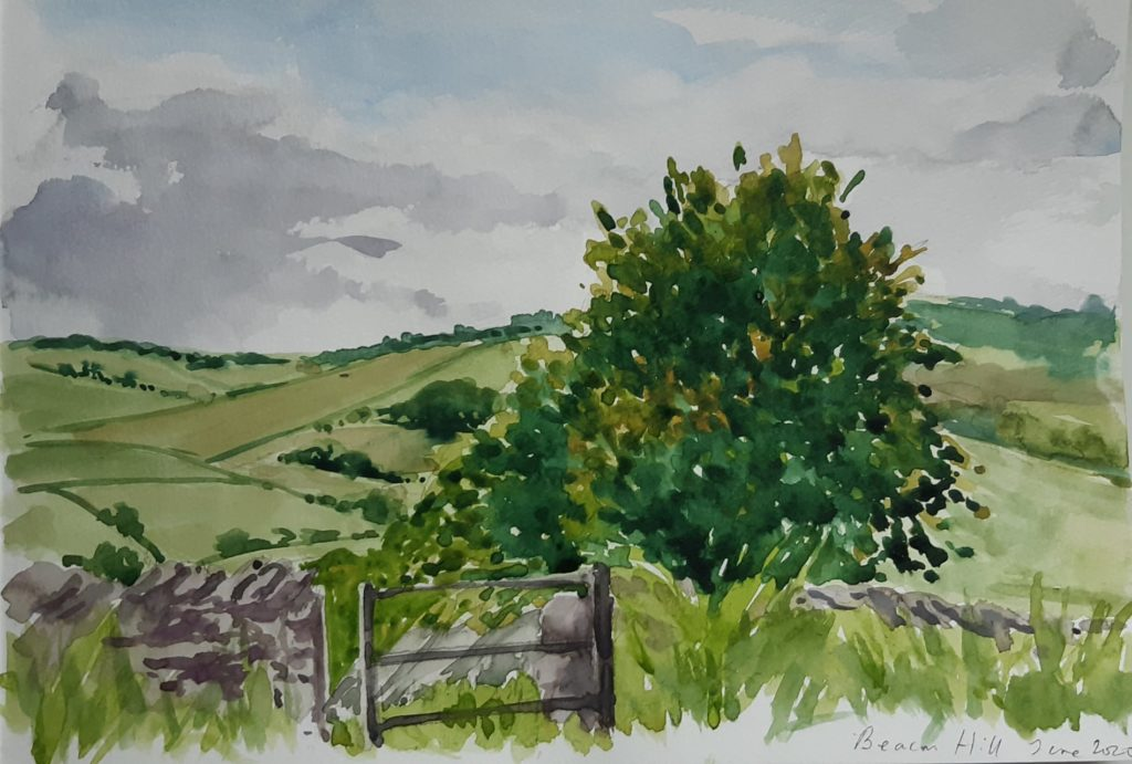 Water colour sketch of Beacon Hill by Marie MacAlister